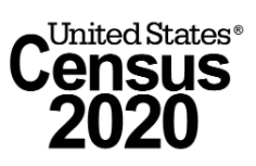 Icon Census